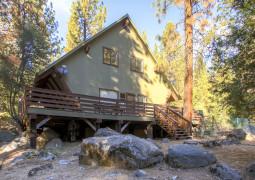 Yosemite's Creekside Birdhouse