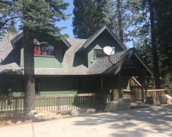 Yosemite Aviary